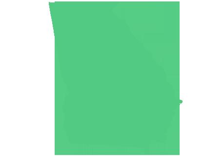 state-insurance-header-georgia
